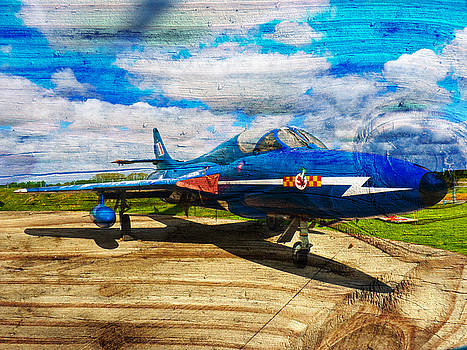 Hawker Hunter T7 aircraft on wood by Robert Gipson