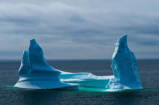 Iceberg in Newfoundland by David Nunuk