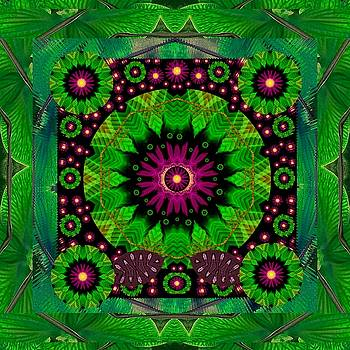 Mandala With real stuff decorative by Pepita Selles
