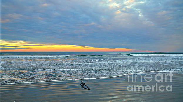 Morning Solitude by Mindy Bench