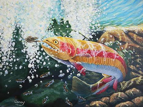 Not Your Average Goldfish by Carey MacDonald