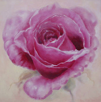 Pink Rose by Eve Corin