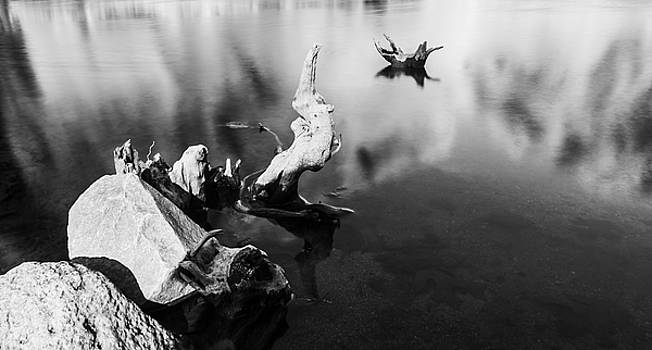Remnants in Water by Nathan Hillis