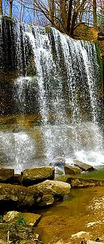 Rock Glen Falls iPhone 6s by Daniel Thompson