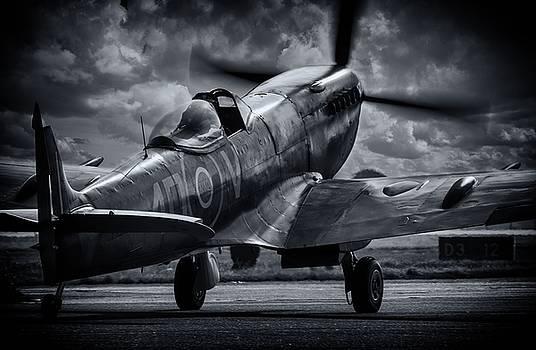 Spitfire by Jason Green