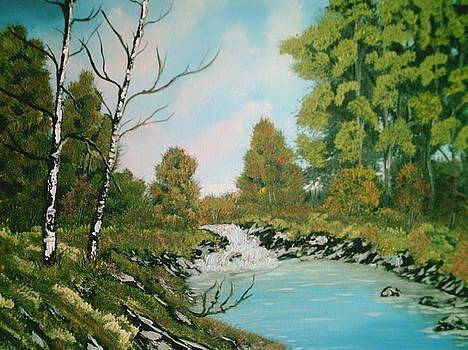 Stream by Jim Saltis
