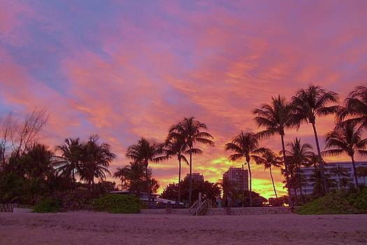 Tropical Beach Sunset by Trudy Brodkin Storace