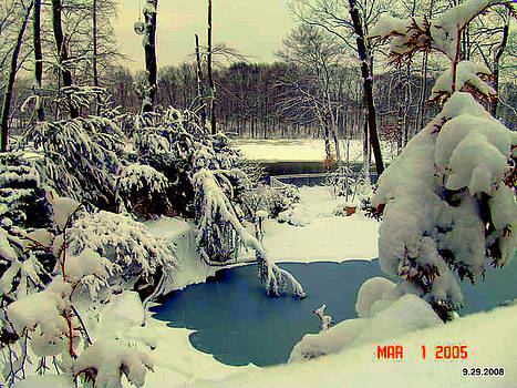 Winter On My Back Yard by Aron