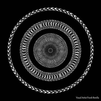 #011020152 by Visual Artist Frank Bonilla