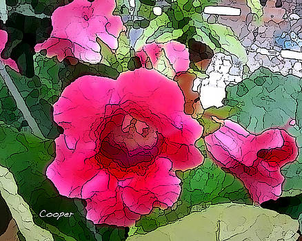 033 Gloxinia by Peggy Cooper