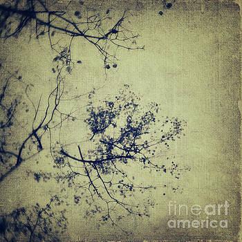 Splatters of blue 3 by Priska Wettstein