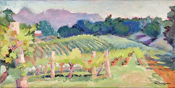 Addison Farm Vineyard Morning Light by Lisa Blackshear