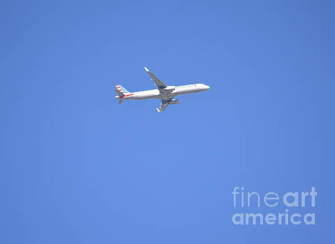 Airliner At Work  by Ruth Housley
