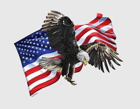 America by Owen Bell