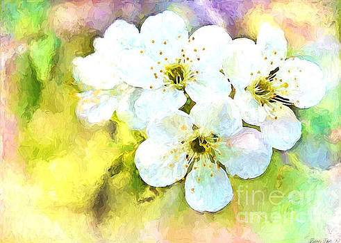 Apple Blossom Painted effect by Debbie Portwood