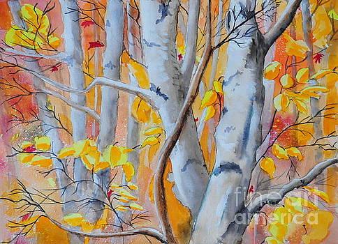 Autumn Birch by John W Walker