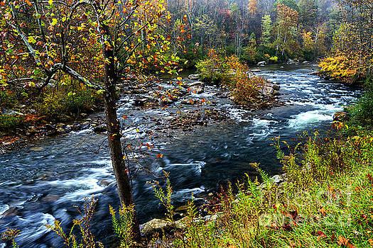 Autumn Cherry River by Thomas R Fletcher