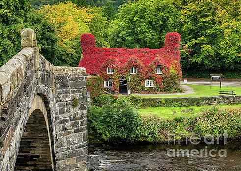 Adrian Evans - Autumn Cottage