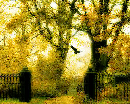 Gothicolors Donna Snyder - Autumn Graveyard