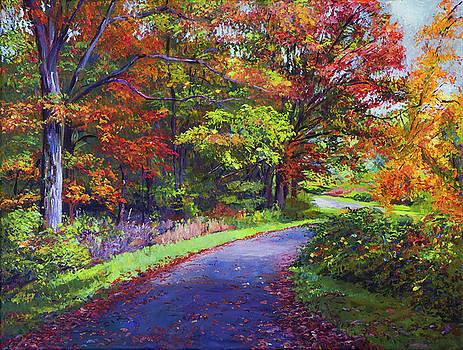 Autumn Leaf Road by David Lloyd Glover