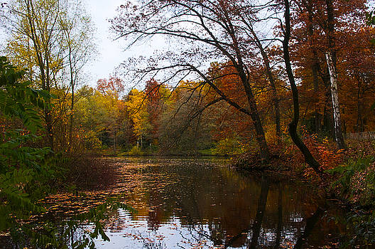Angela Doelling AD DESIGN Photo and PhotoArt - Autumn on the lake