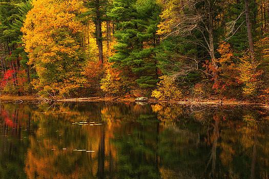 Karol  Livote - Autumns Calm