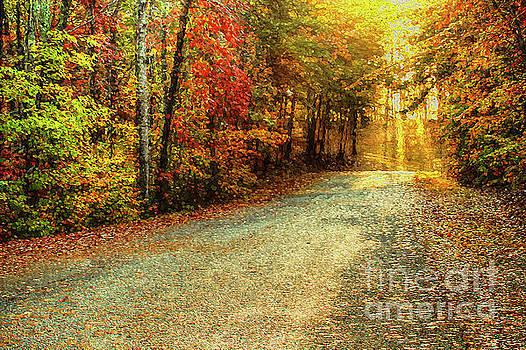 Autumns Path by Darren Fisher