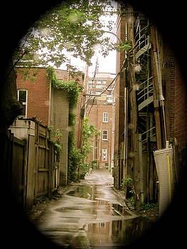 Back Lanes by Michael Litvack
