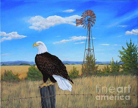 Bald Eagle by Sid Ball