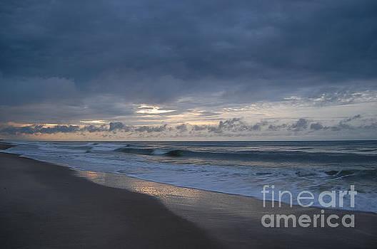 Beach by Mim White