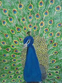 Beauty With Elegance by Saman Khan