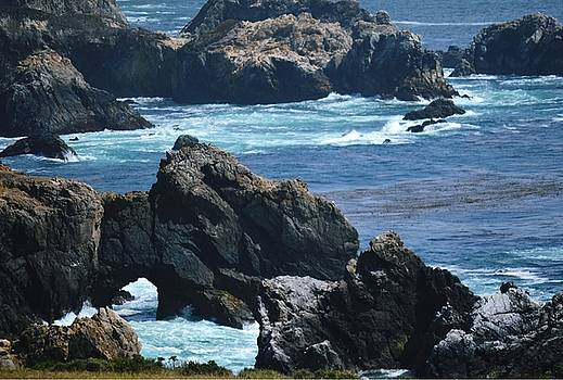 Big Sur by Marian Jenkins