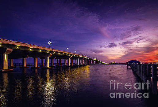 Biloxi Bay Bridge  by Joan McCool