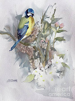 Bird by Shane Guinn