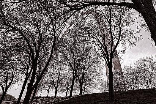 Blending In by Robert FERD Frank