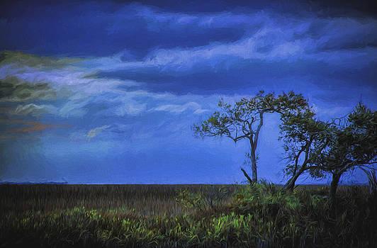 Dave Bosse - Blue Sunset