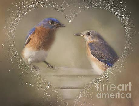 Bluebird Love by Pam  Holdsworth