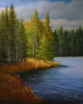 Breaking Through by Paula Ann Ford