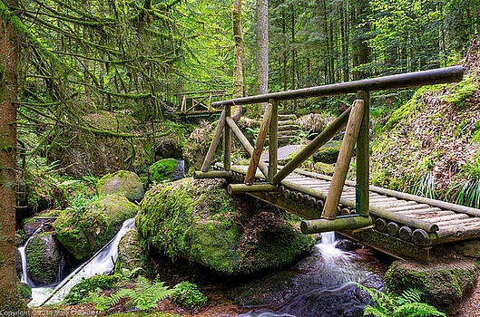 Bridge in Black Forest Germany  by Mark Chandler
