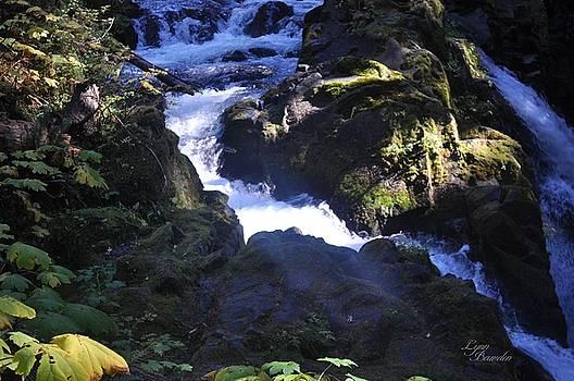 Brink Of The Falls by Lynn Bawden