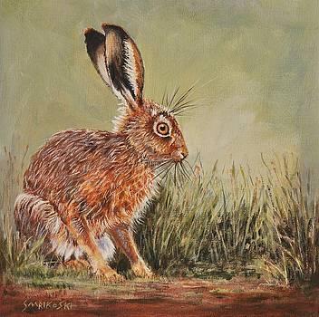 Brown Hare - Sitting Pretty by Louise Charles-Saarikoski