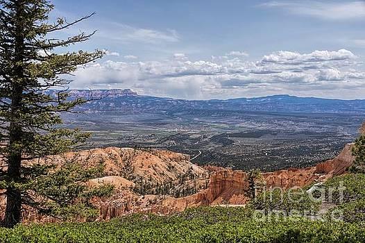 Bryce Landscape by Peggy J Hughes