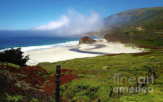 California Coast by Gregory Dyer