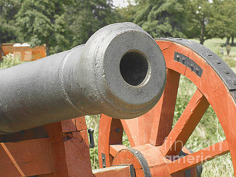 Cannon by Raymond Earley