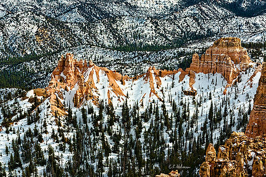 Christopher Holmes - Canyon View