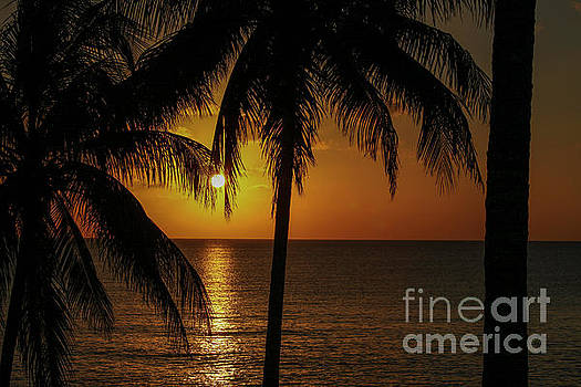 Caribbean sunset by Patricia Hofmeester