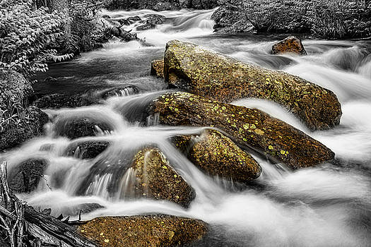 Cascading Water and Rocky Mountain Rocks by James BO  Insogna