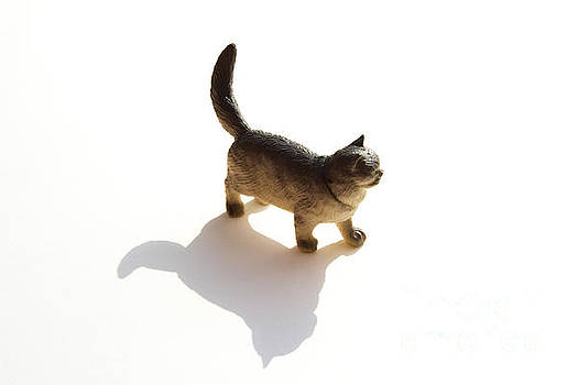 BERNARD JAUBERT - Cat figurine