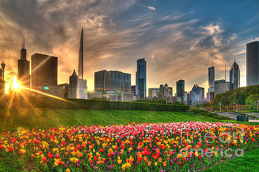 Chicago Spring by Jeff Lewis