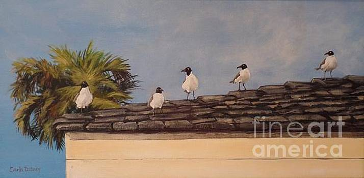 Cinco Seagulls by Carla Dabney